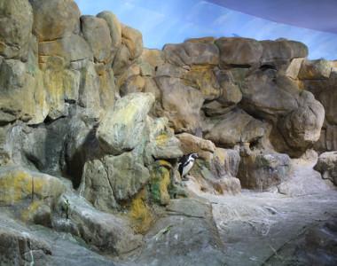 Zona de pingüinos en L'Aquàrium Barcelona